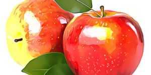 Можно ли на яблоках похудеть