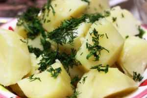 Можно ли есть картошку на диете? Как она влияет на организм? - Чемпионат